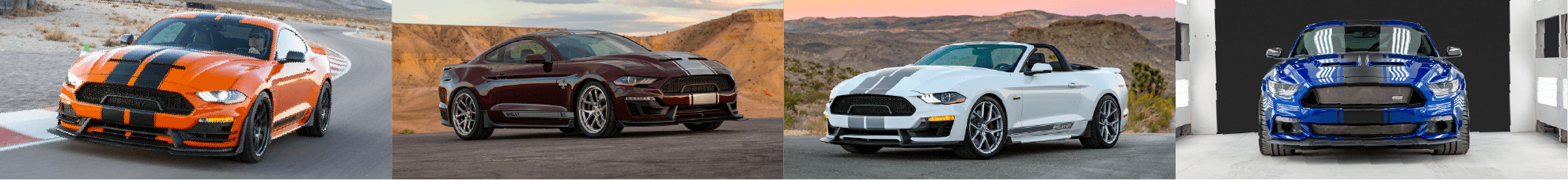 Bayfield Ford Shelby Vehicle Lineup