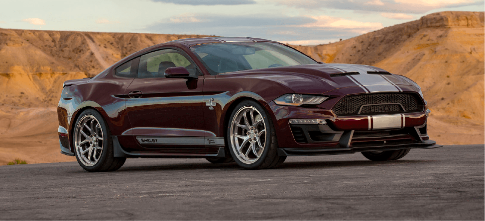 Bayfield Ford Shelby Super Snake