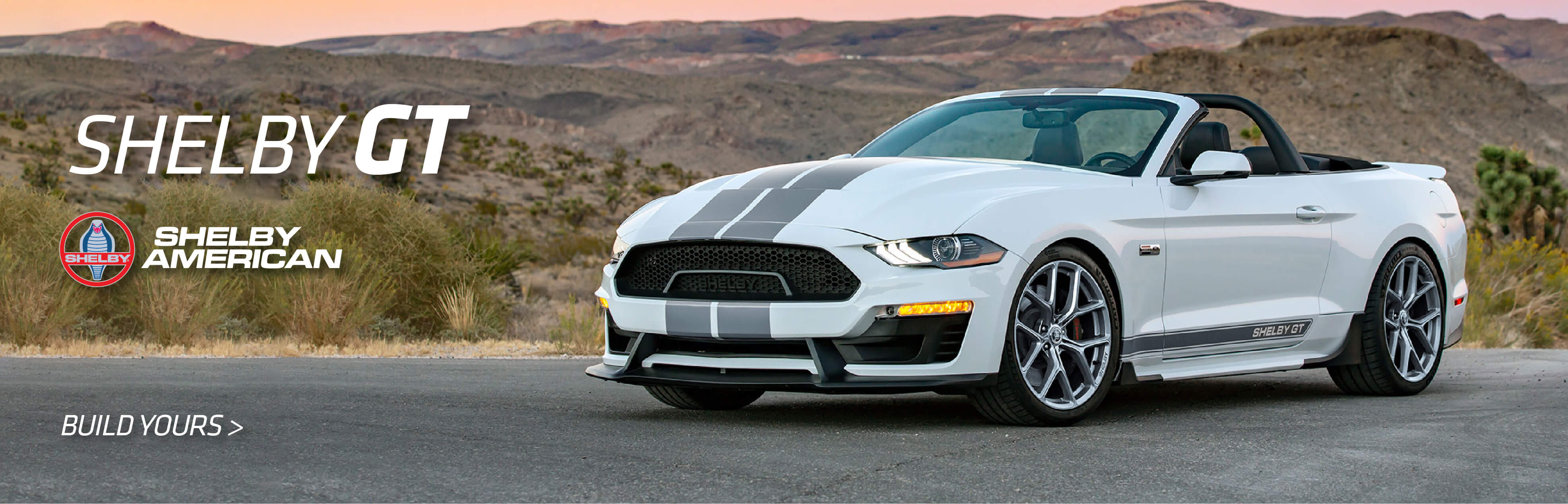 Shelby GT White